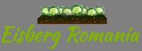 Eisberg Romania
